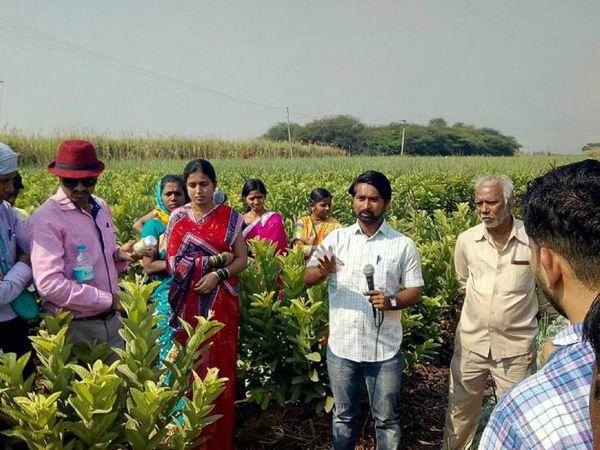 सचिन खुद की खेती के साथ-साथ दूसरे किसानों को भी ऑर्गेनिक फार्मिंग की ट्रेनिंग देते हैं।