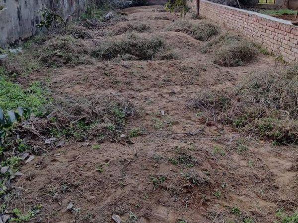 शबनम ने प्रेमी सलीम के साथ मिलकर अपने परिवार के सभी सात लोगों की हत्या कर दी थी। घर से लगे बाग में उन सातों की कब्रें हैं।
