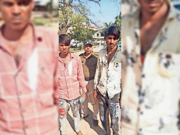 गिरफ्तार दोनों आरोपी पशु तस्कर। - Dainik Bhaskar