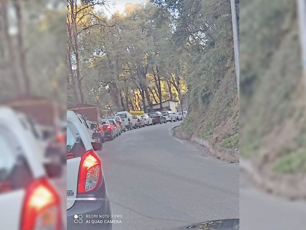 बालूगंज के जंगल में मंगलवार सुबह के समय लगा ट्रैफिक जाम। - Dainik Bhaskar