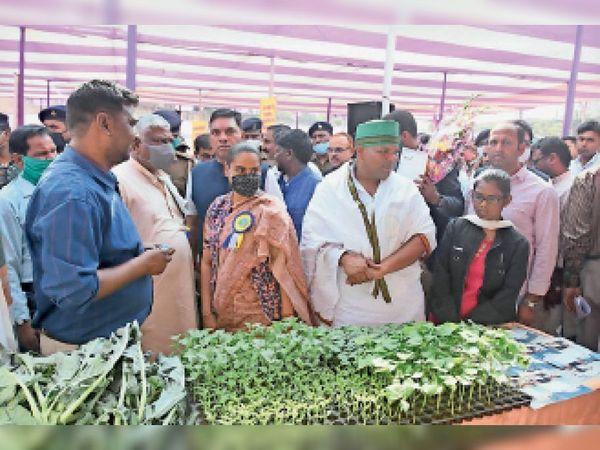 जिला परिषद मैदान में लग कृषि प्रदर्शनी सह किसान संगोष्ठी में शामिल कृषि मंत्री व अन्य। - Dainik Bhaskar