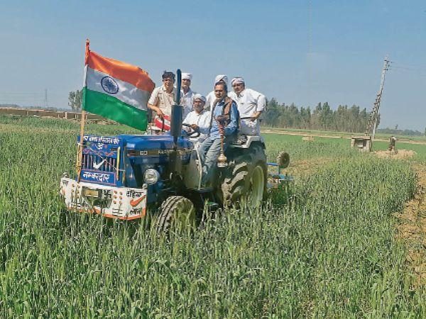 सेहरी गांव में अपनी गेहूं की खड़ी फसल पर ट्रैक्टर चलाता किसान बलवान सिंह नंबरदार। - Dainik Bhaskar