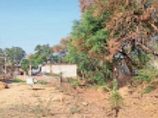 कुतघान राेड स्थित नाले की जमीन दबाकर लाेगाें ने मकान बना लिए हैं। - Dainik Bhaskar