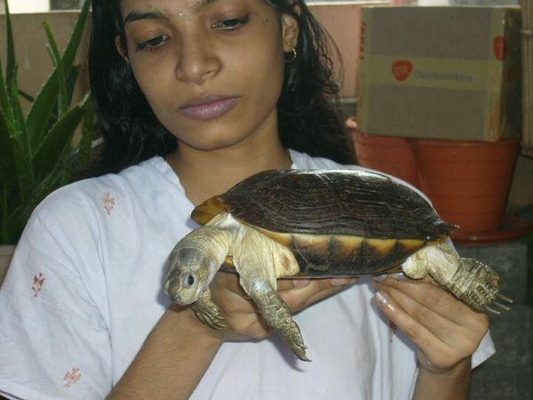 निशा मुंबई में वन्यजीवों के लिए एक NGO चलाती हैं।