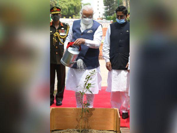 प्रधानमंत्री मोदी ने ढाका में राष्ट्रीय शहीद स्मारक पर पौधा लगाया।