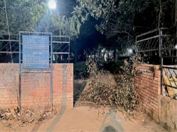 सेक्टर-15 के पार्क में झाड़ियां लगा रास्ता रोक दिया गया है। - Dainik Bhaskar