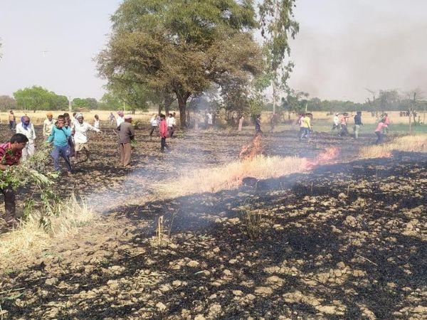 नागौद क्षेत्र के मढ़ी-बधाव गांव के खेतों में लगी आग बुझाते किसान। - Dainik Bhaskar