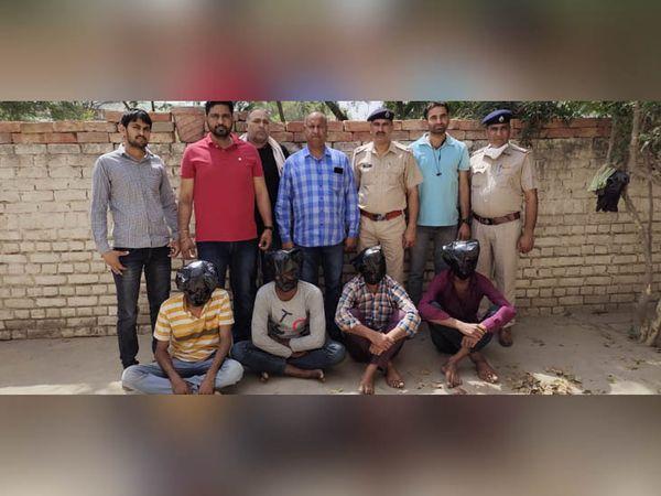 पकड़े गए आरोपियों की पहचान राजस्थान की रावला मंडी के त्रिलोक सिंह, सुखदेव सिहं उर्फ राजू, 16 KND घड़साना के मांगे लाल और सुखविंद्र सिंह उर्फ सोनू के रुप में हुई है। - Dainik Bhaskar
