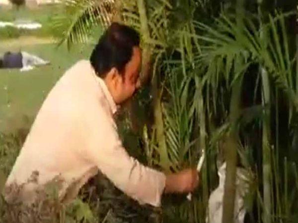 शहर के कांग्रेसी सांसद सतीश कैंथ ने सांसद किरण खेर को पार्कों में मोमबत्ती लेकर खोजा। - Dainik Bhaskar