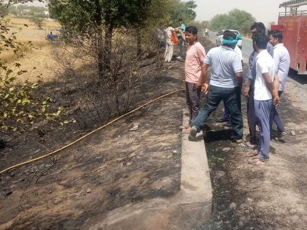 शॉटसर्किट से लगी आग से नीचे जल गई झाड़ियां। - Dainik Bhaskar