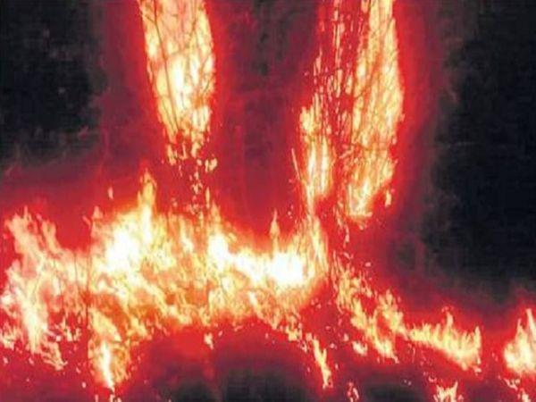 अचानकमार टाइगर रिजर्व (एटीआर) और वन विभाग दोनों अपने क्षेत्र में आग नहीं होने की बात कहकर पल्ला झाड़ रहे हैं।
