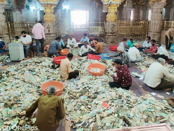 सांवलियाजी| गणना करते मंदिर, बैंक पदाधिकारी व कर्मचारी। - Dainik Bhaskar