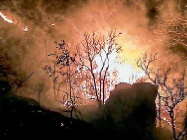 माउंट आबू. हिल स्टेशन माउंट आबू के जंगल में लगी आग। - Dainik Bhaskar
