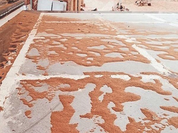 नागौर, रेत के गुबार के कारण आंगन में इस तरह रेत जमा हो गई। - Dainik Bhaskar