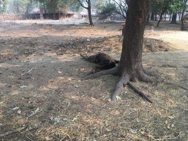 मुठभेड़ में 9 नक्सलियों के भी मारे जाने का दावा किया जा रहा है।  इसमें एक महिला नक्सली का शव बरामद कर लिया गया है