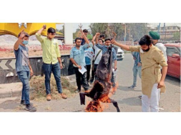 नक्सलवाद का पुतला फूंकते अखिल भारतीय विद्यार्थी परिषद के सदस्य। - Dainik Bhaskar