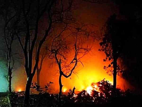 गुलाब बाग से सटे कमल तलाई में लगी आग ने रात होते-होते विकराल रूप ले लिया।