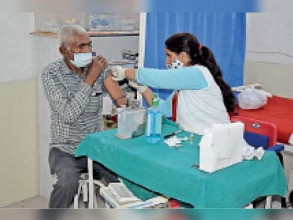 अश्व प्रजनन स्टड में वैक्सीन लगवाता कर्मचारी। - Dainik Bhaskar