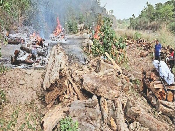 24 घंटे में कांगड़ा में 6 शव एक साथ जले - Dainik Bhaskar