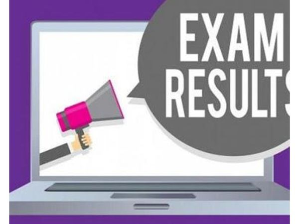 सरकारी स्कूलों में मंगलवार को एमआईएस पोर्टल पर परीक्षाओं के अंक अपलोड कर दिए हैं। - Dainik Bhaskar