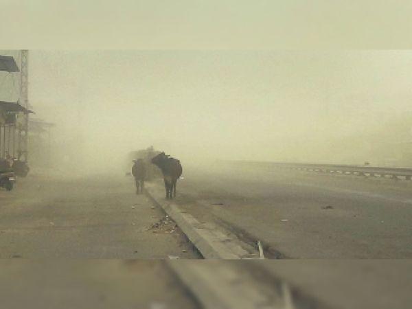 मंगलवाड़ में तेज अंधड़ के साथ बारिश - Dainik Bhaskar