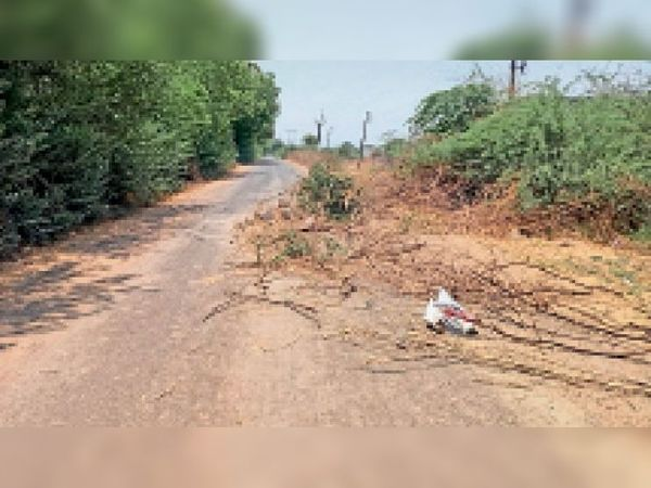 नावड़तौड़ी मार्ग पर कांटे हटाकर लोग नर्मदा किनारे पहुंच रहे हैं। - Dainik Bhaskar