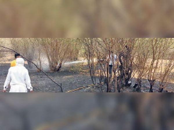 टोडारायसिंह| बीसलपुर के जंगल में लगी आग को नियंत्रित करता दमकल कर्मी। - Dainik Bhaskar