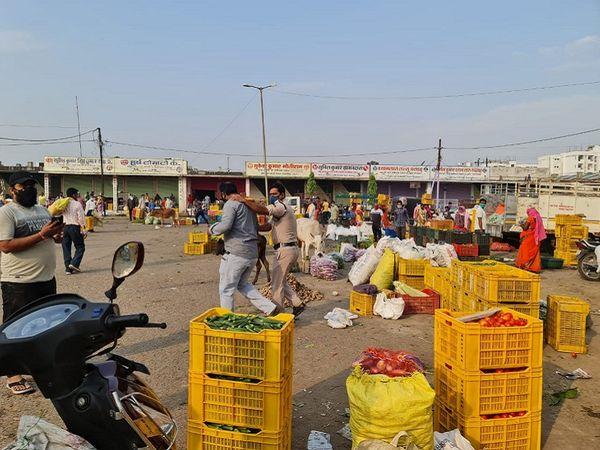 प्रशासन की ओर से संक्रमण के चलते लगे लॉकडाउन को देखते हुए थोक व्यापारियों और किराना व्यापारियों के लिए अलग-अलग नियम तय किए हैं। - Dainik Bhaskar