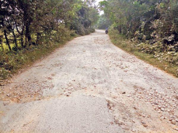 लदौरा कलौजर जाने वाली जर्जर सड़क। - Dainik Bhaskar