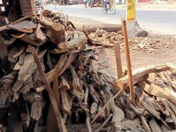 बढ़ी कीमतों को देखते हुए पटना नगर निगम ने बाहर से लकड़ी मंगाने का फैसला लिया है। - Dainik Bhaskar