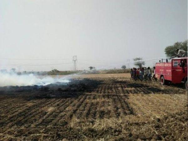 खेत में लगी आग को बुझाती फायर ब्रिगेड। - Dainik Bhaskar