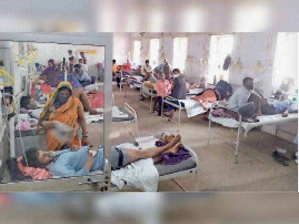 सवाई माधोपुर| सामान्य चिकित्सालय के मेडिकल वार्ड में भर्ती मरीज। - Dainik Bhaskar