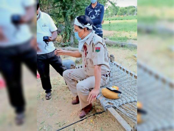 सुंधामाता. पैंथर के हमले से घायल रैंजर। - Dainik Bhaskar