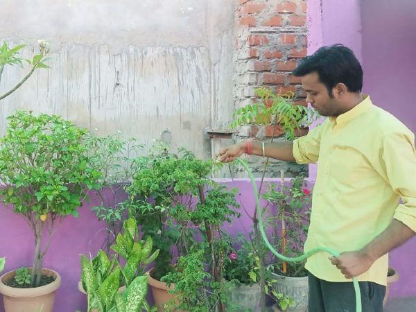 कोरोना से बचने के लिए लोगों ने घर के गार्डन में इन औषधीय पौधों को गमले में लगाया, रोजाना कर रहे इनका उपयोग। - Dainik Bhaskar
