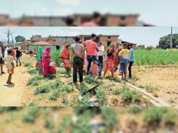 आमला । ब्लॉक की ग्राम पंचायत सोमलापुर में 2 माह से ग्रामीण पेयजल संकट से जूझ रहे हैं। - Dainik Bhaskar