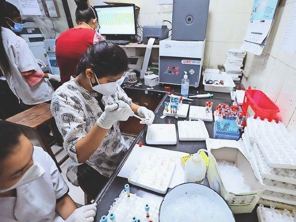 सच्चे वॉरियर-  41 स्टाफ दिन-रात ड्यूटी कर तैयार कर रहे रिपोर्ट - Dainik Bhaskar