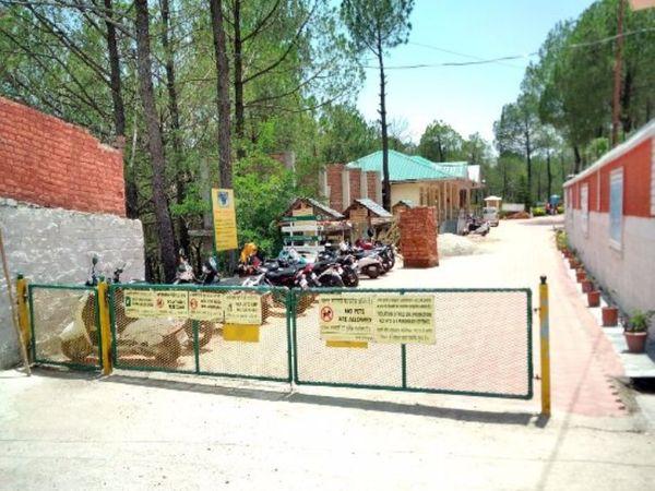 गोपालपुर जू में विजिटर्स को लेकर एहतियातन कई तरह की बंदिशें लगा दी गई है। - Dainik Bhaskar