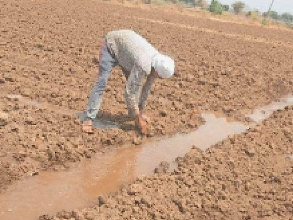 कपास बुवाई के लिए खेत तैयार किए जा रहे हैं। - Dainik Bhaskar