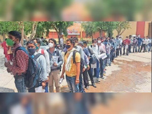 दौसा। जिला परिषद कार्यालय परिसर में इंटरव्यू के लिए लगी अभ्यर्थियों की भारी भीड़। - Dainik Bhaskar