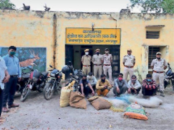 भरतपुर, वन विभाग द्वारा पकड़े गए आरोपी - Dainik Bhaskar