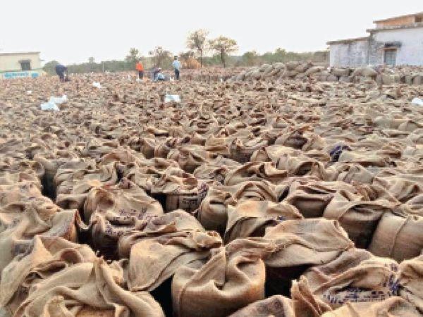 खुरई | परिवहन न होने के चलते केन्द्रों पर गेहूं की बोरियां पड़ी हैं। बारिश होने पर गेंहू की बोरियां भीग सकती हैं। - Dainik Bhaskar