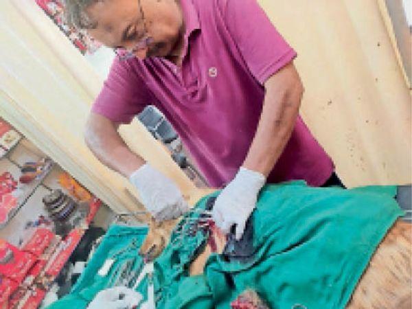 डॉगी का ऑपरेशन करते हुए डॉक्टर। - Dainik Bhaskar