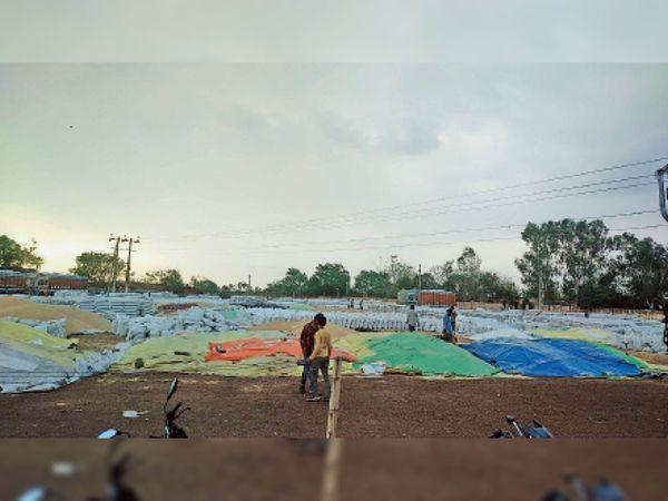 सुबह हल्की बूंदाबांदी के बाद खरीदी केंद्र पर उपज भीगने से बचाने के लिए किसानों में हड़कंप मच गया। - Dainik Bhaskar