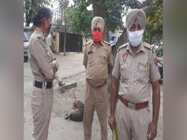होशियारपुर में हत्या की वारदात के बाद शव बरामद किए जाने वाली जगह पर मौजूद पुलिस। -फाइल फोटो - Dainik Bhaskar