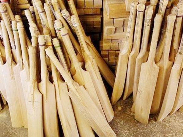 अभी विलो की लकड़ी से बैट बनाए जाते हैं। ये लकड़ी ज्यादातर इंग्लैंड और कश्मीर में पाई जाती है।