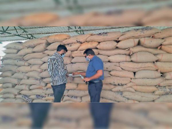 गेहूं ख़रीदी केंद्र पंथपिप्लई में भंडारण का जायजा लेते जिला आपूर्ति नियंत्रक - Dainik Bhaskar