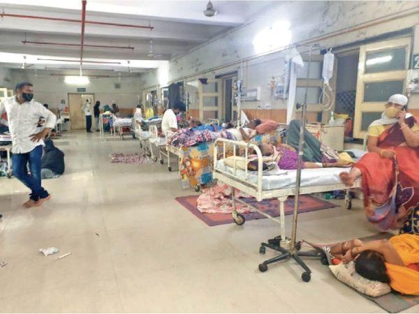 प्रदेश में अस्पतालों को देने के लिए एंटी फंगल दवाएं नहीं, अकेले एमवाय को ही लायपोसोमल एम्फोसिटीरिन-बी की रोज कम से कम 150 वायल चाहिए। - Dainik Bhaskar