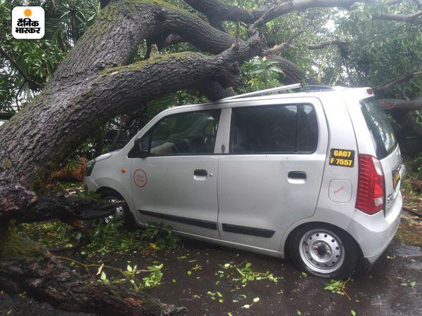 गोवा के पंजिम में तेज हवा से कई पेड़ गिर गए। इससे वाहनों को भी भारी नुकसान उठाना पड़ा। इसे हटाने में प्रशासन को काफी मशक्कत करनी पड़ी।