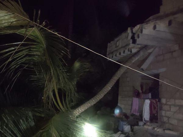 जूनागढ़ में नारियल का पेड़ टूटकर एक घर पर गिर गया।