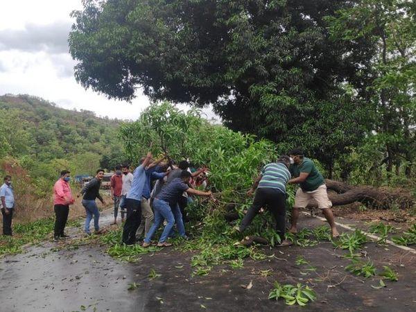 कशेडी घाट पर देर रात तेज हवाओं की वजह से एक पेड़ गिर गया। जिससे करीब एक घंटे यातायात बाधित रहा। इसकी सूचना मिलने पर युवासेना के कार्यकर्ताओं ने वहां जाकर पेड़ हटाया।